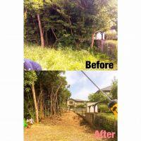 鈴鹿市伐採|隣地に越境している樹木の伐採作業
